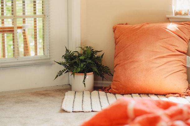 gulvpuder til hjemmet